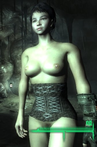 Лучшие моды для Fallout-3. Обзор модов. Fallout New Vegas.